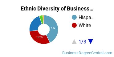 Business Support & Assistance Majors in TX Ethnic Diversity Statistics