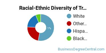 Racial-Ethnic Diversity of Traffic, Customs, and Transportation Clerk/Technician Students with Bachelor's Degrees
