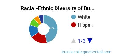 Racial-Ethnic Diversity of Business Communications Students with Bachelor's Degrees