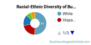 Racial-Ethnic Diversity of Business Communications Bachelor's Degree Students