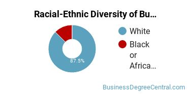 Racial-Ethnic Diversity of Business Communications Graduate Certificate Students