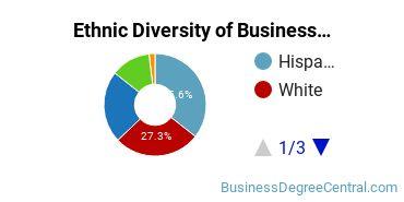 Corporate Communications Majors in NY Ethnic Diversity Statistics