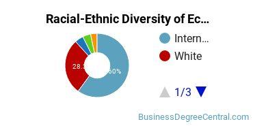 Racial-Ethnic Diversity of Economics Master's Degree Students