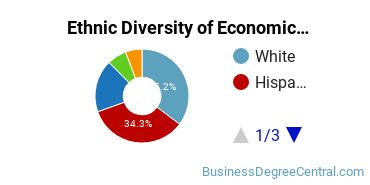 Economics Majors in NM Ethnic Diversity Statistics