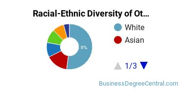 Racial-Ethnic Diversity of Other Economics Students with Bachelor's Degrees