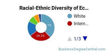 Racial-Ethnic Diversity of Econometrics and Quantitative Economics Students with Bachelor's Degrees