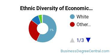 Economics Majors in UT Ethnic Diversity Statistics