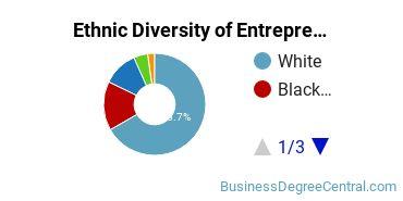 Entrepreneurial Studies Majors in DE Ethnic Diversity Statistics