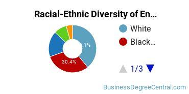 Racial-Ethnic Diversity of Entrepreneurship Doctor's Degree Students