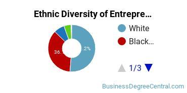 Entrepreneurial Studies Majors in GA Ethnic Diversity Statistics