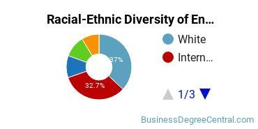 Racial-Ethnic Diversity of Entrepreneurship Master's Degree Students