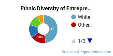 Entrepreneurial Studies Majors in NY Ethnic Diversity Statistics