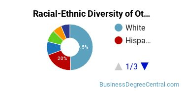 Racial-Ethnic Diversity of Other Entrepreneurial and Small Business Operations Students with Bachelor's Degrees