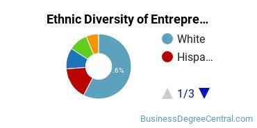 Entrepreneurial Studies Majors in TX Ethnic Diversity Statistics