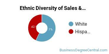 General Sales & Marketing Majors in CO Ethnic Diversity Statistics