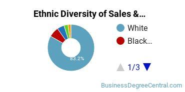 General Sales & Marketing Majors in IN Ethnic Diversity Statistics