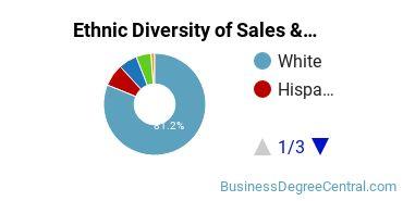 General Sales & Marketing Majors in KS Ethnic Diversity Statistics