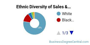 General Sales & Marketing Majors in MI Ethnic Diversity Statistics