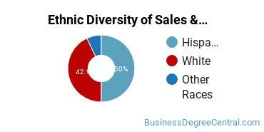General Sales & Marketing Majors in NM Ethnic Diversity Statistics