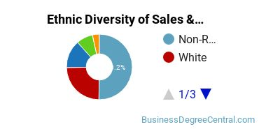 General Sales & Marketing Majors in NY Ethnic Diversity Statistics