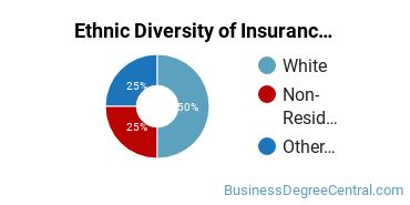 Insurance Majors in DC Ethnic Diversity Statistics