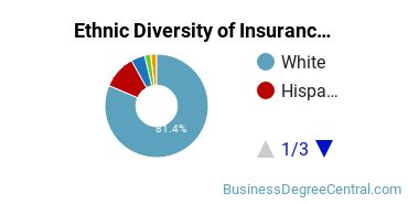 Insurance Majors in FL Ethnic Diversity Statistics
