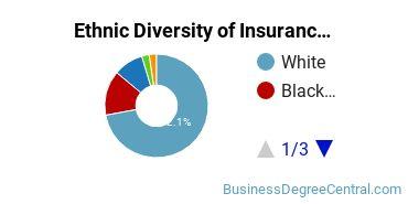 Insurance Majors in LA Ethnic Diversity Statistics