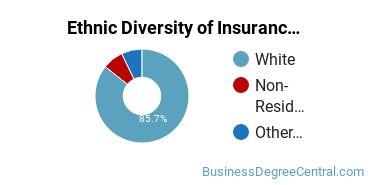 Insurance Majors in ME Ethnic Diversity Statistics