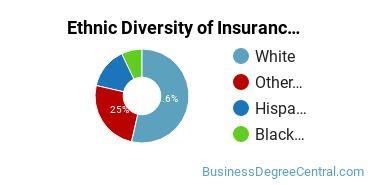 Insurance Majors in MA Ethnic Diversity Statistics