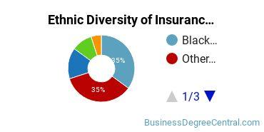 Insurance Majors in NJ Ethnic Diversity Statistics