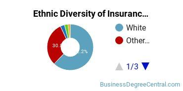 Insurance Majors in PA Ethnic Diversity Statistics