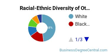 Racial-Ethnic Diversity of Other MIS Students with Bachelor's Degrees