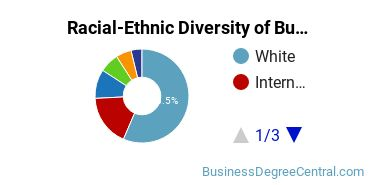 Racial-Ethnic Diversity of Business Statistics Students with Bachelor's Degrees