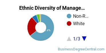 Management Sciences & Methods Majors in CT Ethnic Diversity Statistics