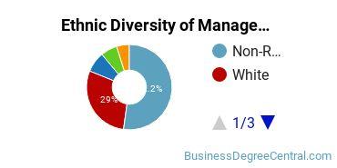 Management Sciences & Methods Majors in DC Ethnic Diversity Statistics