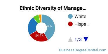 Management Sciences & Methods Majors in FL Ethnic Diversity Statistics