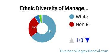 Management Sciences & Methods Majors in IA Ethnic Diversity Statistics