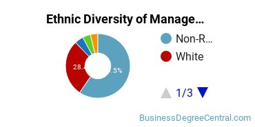 Management Sciences & Methods Majors in MA Ethnic Diversity Statistics