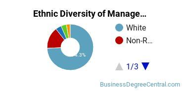 Management Sciences & Methods Majors in MI Ethnic Diversity Statistics
