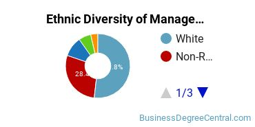 Management Sciences & Methods Majors in MN Ethnic Diversity Statistics