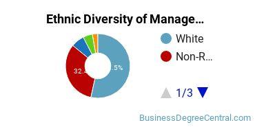 Management Sciences & Methods Majors in MO Ethnic Diversity Statistics