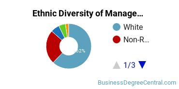Management Sciences & Methods Majors in NE Ethnic Diversity Statistics