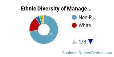 Management Sciences & Methods Majors in NY Ethnic Diversity Statistics