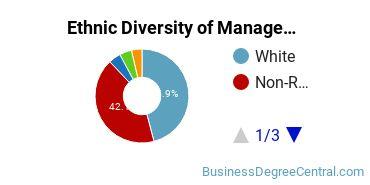 Management Sciences & Methods Majors in PA Ethnic Diversity Statistics