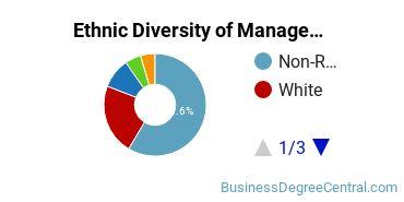 Management Sciences & Methods Majors in TX Ethnic Diversity Statistics