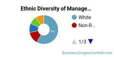 Management Sciences & Methods Majors in VA Ethnic Diversity Statistics