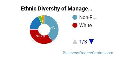 Management Sciences & Methods Majors in WA Ethnic Diversity Statistics