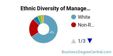 Management Sciences & Methods Majors in WI Ethnic Diversity Statistics