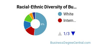 Racial-Ethnic Diversity of Business Economics Students with Bachelor's Degrees