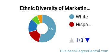 Marketing Majors in AZ Ethnic Diversity Statistics